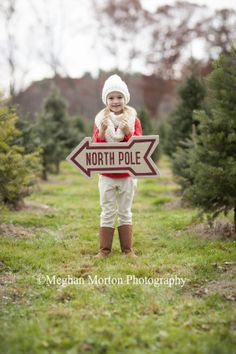 Christmas Tree Farm mini session - Meghan Morton Photography Wareham, MA