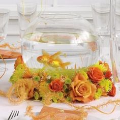 goldfish wedding centerpieces (are there any pretty pink or purple fish that are vibrant in color? and not a bajillion bucks?)