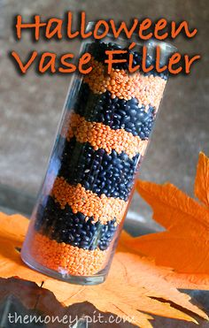 The Money Pit: Halloween Bean and Lentil Vase Filler