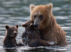 swimming lessons ...