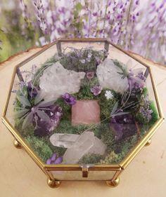 Terrarium - Healing Crystals - Terrarium Kit - Glass Terrarium - Crystal Garden - Metaphysical - Raw Crystals and Stones