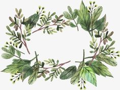 wreath,green,decoration,background