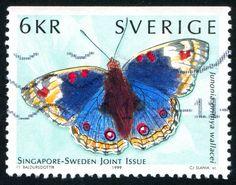 スウェーデン1341