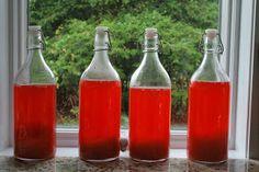 Lacto fermented soda