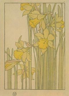 Daffodil by Jeannie Foord ▫ Decorative Flower Studies Series / Pochoir Prints ▫ 1904