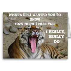 Miss You_ Cards Lw Price Greeting card with a Tiger and it's mouth wide open with a message. art by Elenne Boothe http://www.zazzle.com/miss_you_cards-137827957137698047?rf=238856283564176692  #Greeting Cards #Tigers #Animals #Any Occasions Cards #Zazzle.Com/Elenne #Zazzle #CustomGreetingCards #Missing You