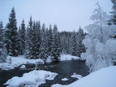 Winter wonderland at Gautestad in Evje, Setesdal. Celebrate Christmas in Southern Norway.  Photo: Elisabeth Høibo©Visit Southern Norway