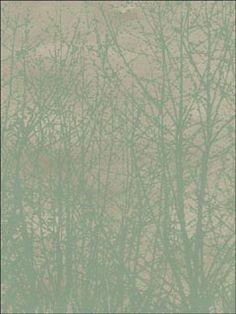 Birches Aqua Silver Wallpaper