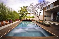 dark wood deck around pool with neat terrace area for seating and tidy hedges, ferns or bamboo along the back