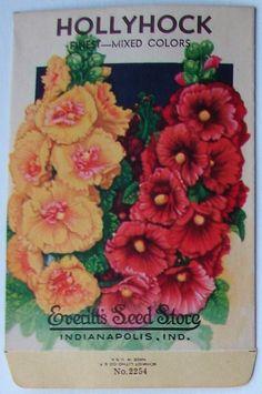 EVERITT'S SEED STORE,  Hollyhock 2254, Vintage Seed Packet