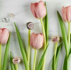 SPRING HAS SPRUNG! So of course I've got sparkle on my mind!Celebrate with some fresh, fabulous bling! #FirstDayofSpring