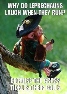 B a leprechaun 😄😄 - Humor Funny Adult Memes, Funny Jokes For Adults, Cool Jokes, Adult Humor, Funny Laugh, Stupid Funny, Funny Stuff, Hilarious Dirty Jokes, Dad Jokes