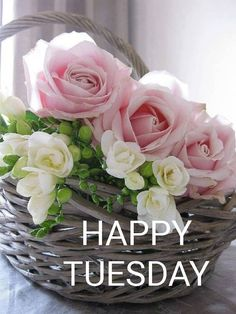 Tuesday Morning, Happy Tuesday, Happy Day, Good Morning Inspirational Quotes, Good Morning Quotes, Good Morning Flowers, Good Morning Images, Tuesday Quotes, Good Morning Greetings