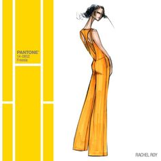 "586 харесвания, 4 коментара – PANTONE (@pantone) в Instagram: ""@Rachel_Roy was inspired by the strength and elegance of women for her #SS14 Collection - enlivened…"""