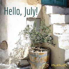 KUKUZI (@kukuzioliveoil) • Instagram photos and videos Olive Tree, Homeland, Greece, Planter Pots, Photo And Video, Videos, Nature, Photos, Inspiration