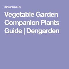 Vegetable Garden Companion Plants Guide | Dengarden
