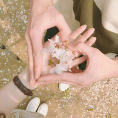 Image about girl in Ulzzang Couples (Relationship Goals💕) by crybaby Couple Ulzzang, Ulzzang Girl, Couple Hands, Korean Couple, Photo Couple, Couple Aesthetic, Cute Couples Goals, Couple Pictures, Beautiful Hands