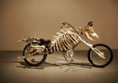 Mad Cow Motorcycle by Billie Grace Lynn, 2008