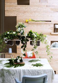 Pflanzen mit weißen Blüten als frisches Hängeelement – Pflanzenfreude.de