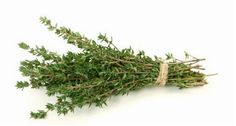 Photo about Thyme isolated on white background. Image of vegetable, culinary, taste - 8000521