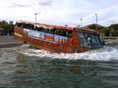Miami Pirate Duck Tours  Just did this! It was cool!!