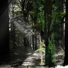Dancing in the woods Ballerina Dancing, Watercolour Painting, Fine Art Photography, Woods, Van, High Gloss, Illustration, Artist, Plants