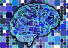 ADHD Tips ADHD Brain