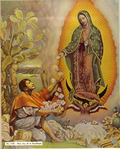 """catholicsoul: """" Saint Juan Diego, you who were chosen by Our Lady of Guadalupe as an instrument to show your people and the world that the way of Christianity is one of love, compassion,. Jesus Born Christmas, Merry Christmas Family, Merry Christmas Pictures, Christmas Nativity, Blessed Mother Mary, Blessed Virgin Mary, Our Lady Of America, Happy Feast Day, American Catholic"""