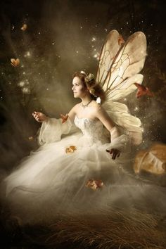 Fantasy-Shooting Fantasy Forest, Fantasy World, Fantasy Art, Fairy Pictures, Angel Pictures, Woodland Creatures, Fantasy Creatures, Fairy Photoshoot, Fairy Wallpaper