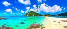 Live Coral, Pub Crawl, Beach Bars, Koh Tao, Small Island, Marine Life, Scuba Diving, Day Trip, Kayaking