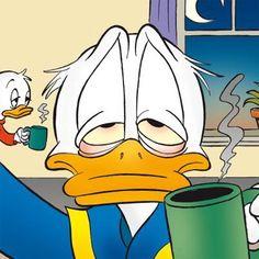 847 Best Donald Duck Images Donald Duck Disney Duck
