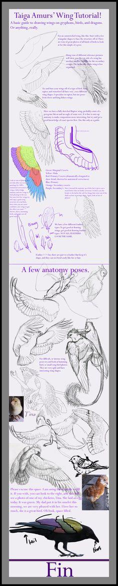 Wing Tutorial by SunStateGalleries.deviantart.com on @deviantART