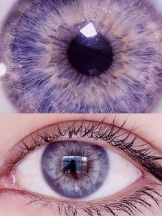 Purple Contacts, Colored Eye Contacts, Cat Eye Contacts, Prescription Colored Contacts, Beautiful Eyes Color, Pretty Eyes, Cool Eyes, Contact Lens Solution, Rose Violette