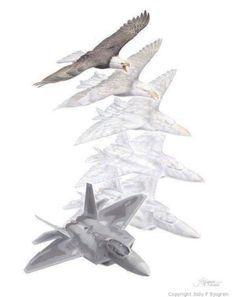 metmorphosis kids art - Google Search