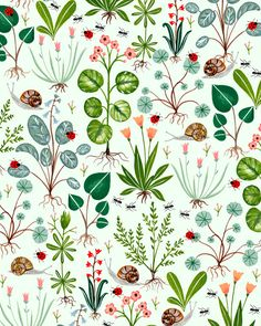 Garden plants and bugs pattern - Flora Waycott