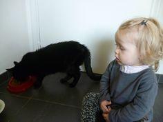 Pippa laat de kat eten!