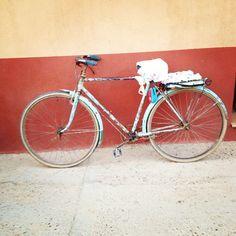 ¿Qué debes saber para viajar con bici? | TodoBus.es by Movelia Bicycle, Vehicles, Did You Know, Traveling, Bicycle Kick, Bike, Cars, Bmx, Vehicle