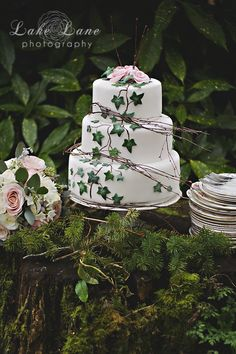Cake anyone? Ivy and Frosted Pink Rose Wedding Cake designed and created by The Cheltenham Cakery www.thecheltenhamcakery.co.uk, Flowers by Stephaine Saunders Floral Design