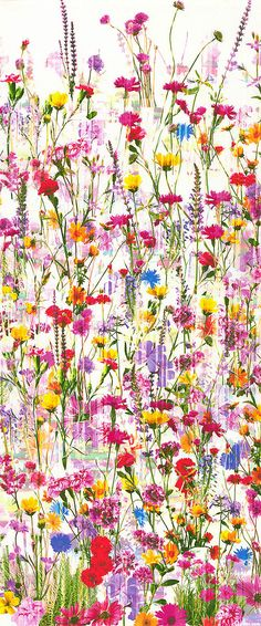 Mystic Meadow - Wildflower Border -  DIGITAL PRINT-Quilt Fabrics from www.eQuilter.com