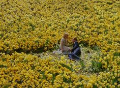 """riggu:""""I loved a man who could never love me back. I was living in a fairytale.""""Big Fish (2003) dir. Tim Burton"""