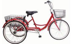 Adult village freewheel velo trike single speed