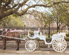 nursery wall art princess fairy tale decor new orleans art carriage ride print jackson square french quarter wall art gift for girl