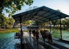 Xunantunich-Belize-horesback-riding-1 San Ignacio Belize, National Treasure, Another World, Horseback Riding, Time Travel, Paths, Backdrops, Trail, Tours