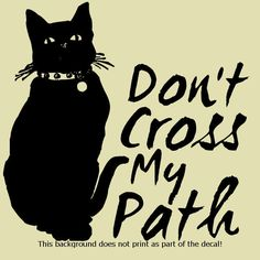 DONT CROSS MY PATH CAT DECAL STICKER ADOPT RESCUE PETS LOVE MY PET DOG CAT DOGS