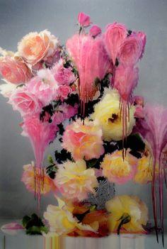 Nick Knight - Flora