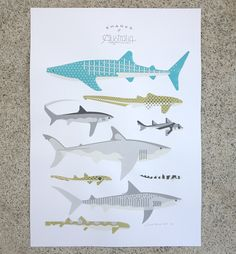 Sharks of Australia print by Amok Island