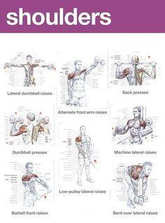 Zona trainer: Shoulders tips