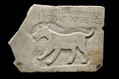 """Roman Panel depicting a Dog wearing a Collar Latin Text: """"For darling Metilianus, Lucius Novius Aprilis made (this)""""  ..... courtesy of Julie Hotchin & Tricia Verveer"""