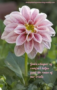 He cares for us with an everlasting, gracious love.  He is the God of all comfort.   simplysharingandserving.weebly.com