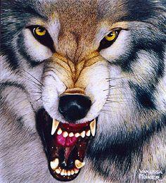 Loup- French for wolf...FIERCE,WILD,beautiful